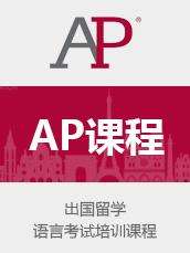 AP 一对一辅导课程