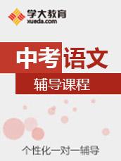 2017中考语文备考冲刺班