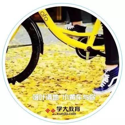 安徽学大教育携手ofo小黄车