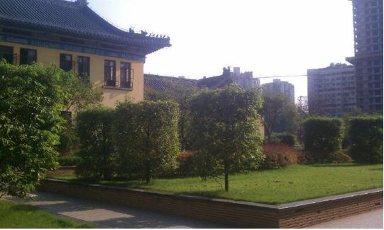重庆理工大学杨家坪校区校园环境好不好